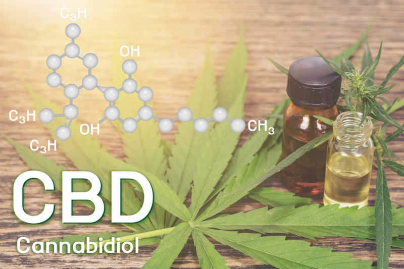 Beginners Guide to Everything CBD