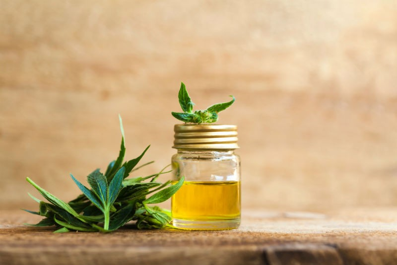 Does CBD Oil Contain Any THC?