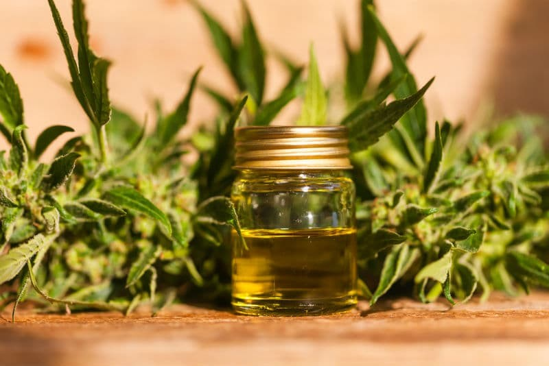 Can You Buy CBD Oil In Sweden?