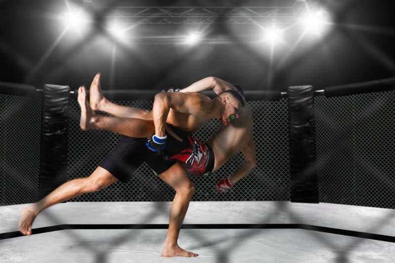 CBD Recovery For MMA Fighters