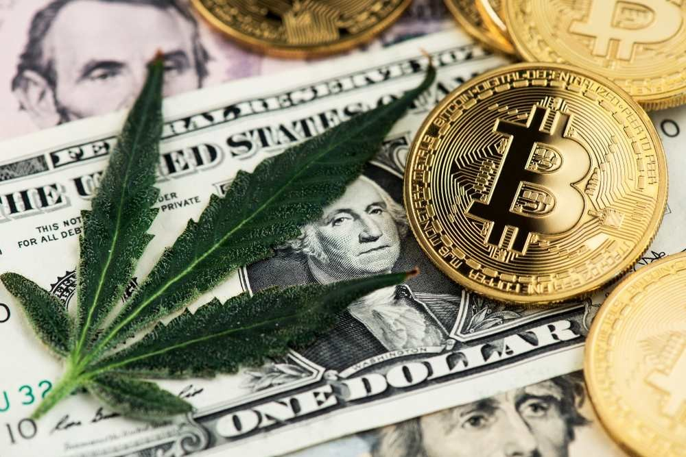 Money is Green: The Cannabis Industry Boom