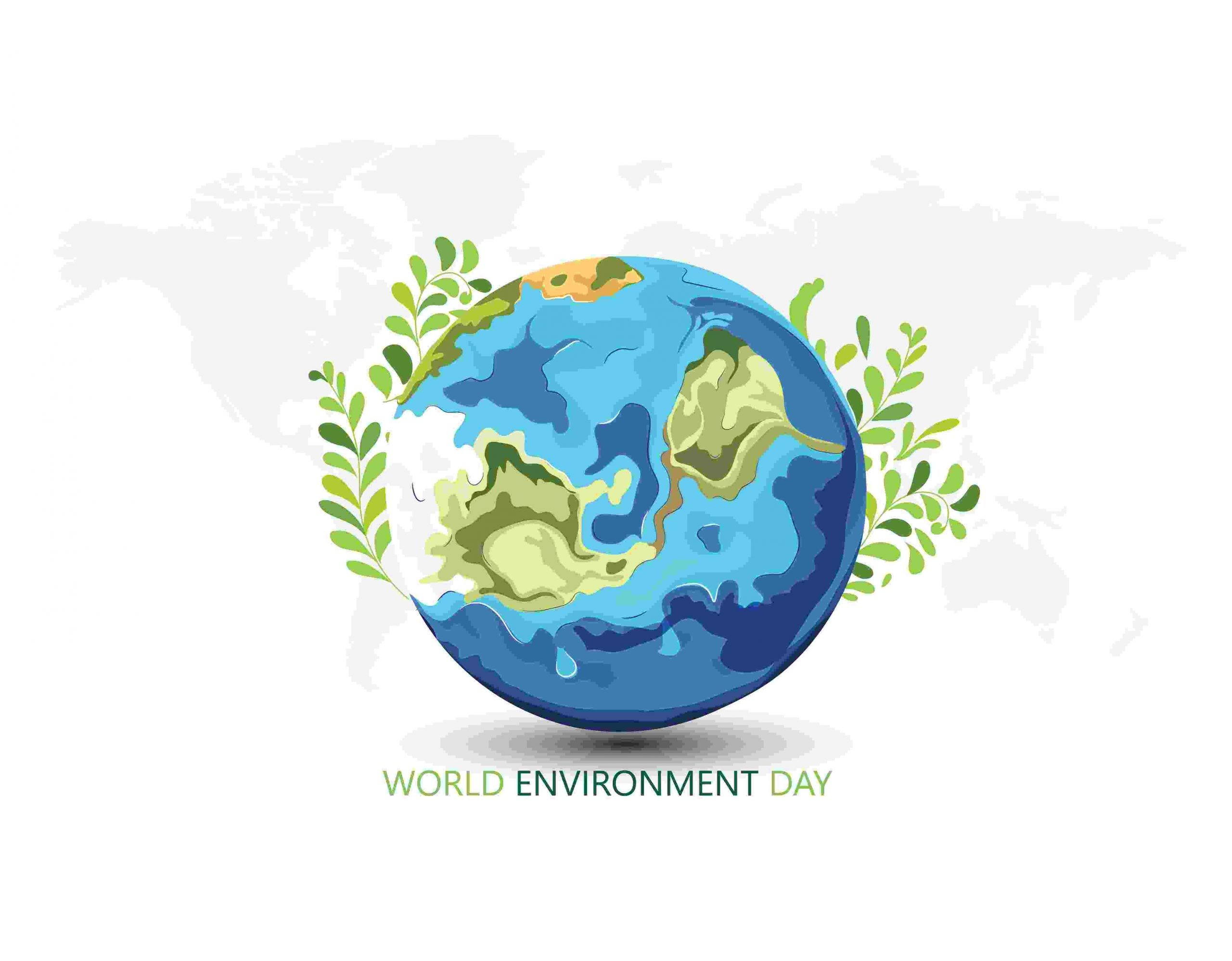 World Environment Day   What You Need to Know